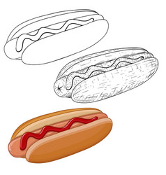 hot dog outline sketch and colored doodle vector image