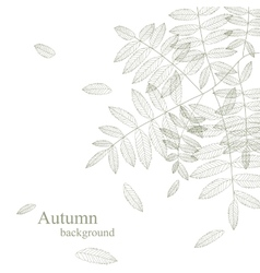 Autumnal bright leaf background vector image