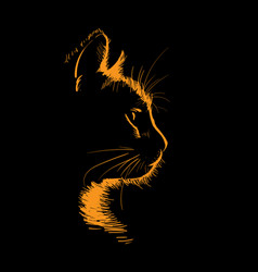 Cat portrait silhouette in contrast backlight vector