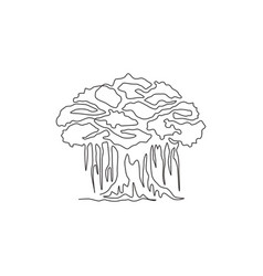 single continuous line drawing shady and leafy vector image