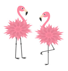 two pink flamingo set flower body exotic tropical vector image