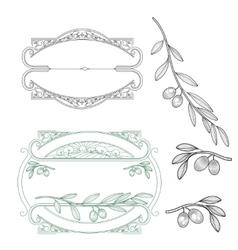 Set for logo olive vector