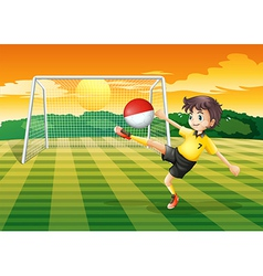 A player kicking ball with flag of vector