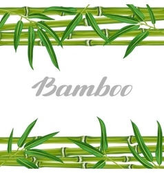 Background with bamboo plants and leaves Image vector