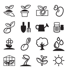 Cultivate plant grow icons set vector