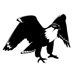 Falcon black and white vector