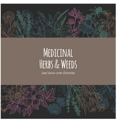 horizontal rectangular banner with color medicinal vector image