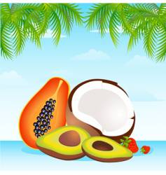 island fruit vector image