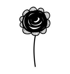 Rustic rose decoration design vector