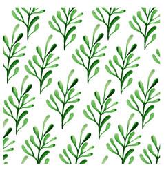 botanicals pattern herbs leaf background im vector image