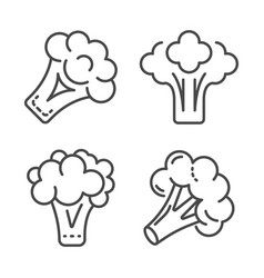 broccoli cabbage icon set outline style vector image