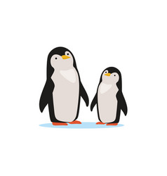 Couple of penguins sitting on an ice arctic fauna vector