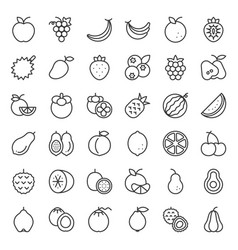 Cute fruit outline icon set vector