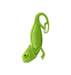 cute small green chameleon lizard cartoon animal vector image