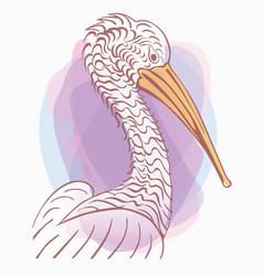 pelican bird sign lo vector image