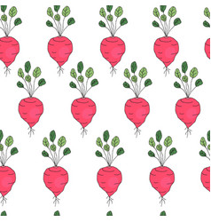 Seamless pattern with radish vector