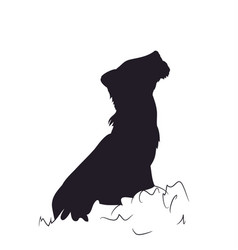 small lion sits silhouette vector image