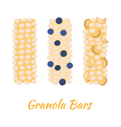 granola bars caramel with grain berries nuts vector image vector image