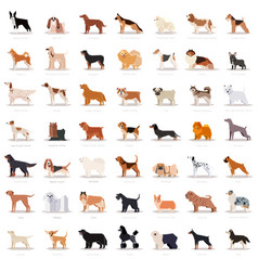 big set flat dogicons vector image