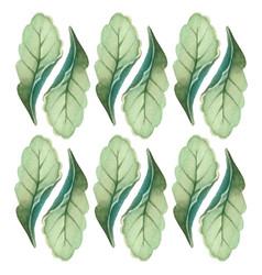 botanicals pattern green leaves herb background ve vector image