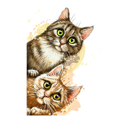 cats wall sticker graphic colored hand-drawn vector image
