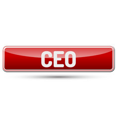 Ceo - abstract beautiful button with text vector