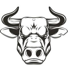 ferocious bull head vector image vector image