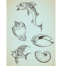 Fish and sea shells vector