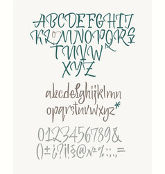 Latin calligraphic alphabet written with brush vector