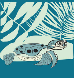 may 23 - world turtle day vector image