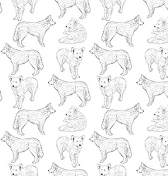 seamless pattern with dogs Shepherd Sketch drawing vector image