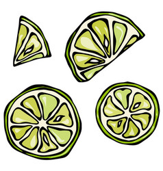 Set slices of lime isolated on white background vector