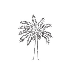 Single one line drawing beauty and exotic date vector
