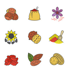 Spices color icons set vector