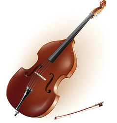 Classical contrabass vector image vector image