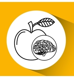 Apple brain school knowledge vector