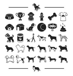 Care accessories dog breeding and other web icon vector