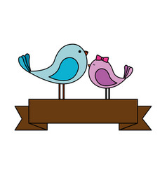 Cute mother and son birds with ribbon characters vector