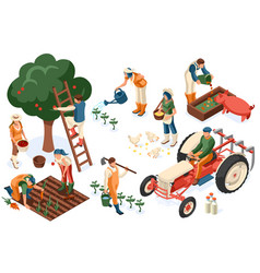 flat tractor set farmer vector image