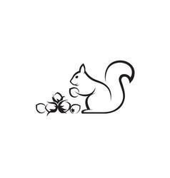 icon squirrel vector image