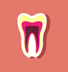 Paper sticker on stylish background tooth vector