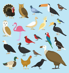 set domestic birds and tropical animals vector image