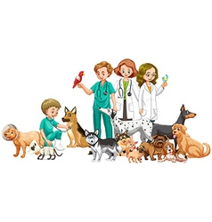 Vets and many animals vector