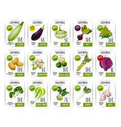 fresh vegetable price label and tag set design vector image