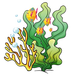A school of fishes near the seaweeds vector image