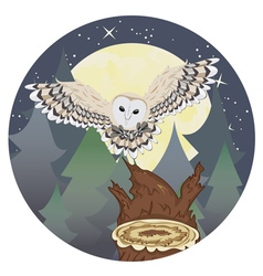 Barn Owl on a Tree Stump3 vector image