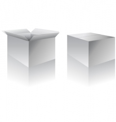 boxes vector image