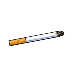 Burning cigarette with yellow filter side view vector image