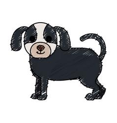cute dog pet icon vector image