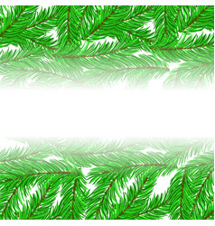 fir green branches pattern vector image